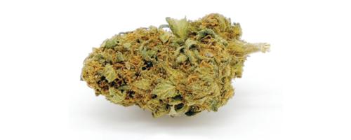 Pineapple (Purple) CBD